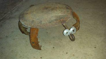 #2 turtle $29